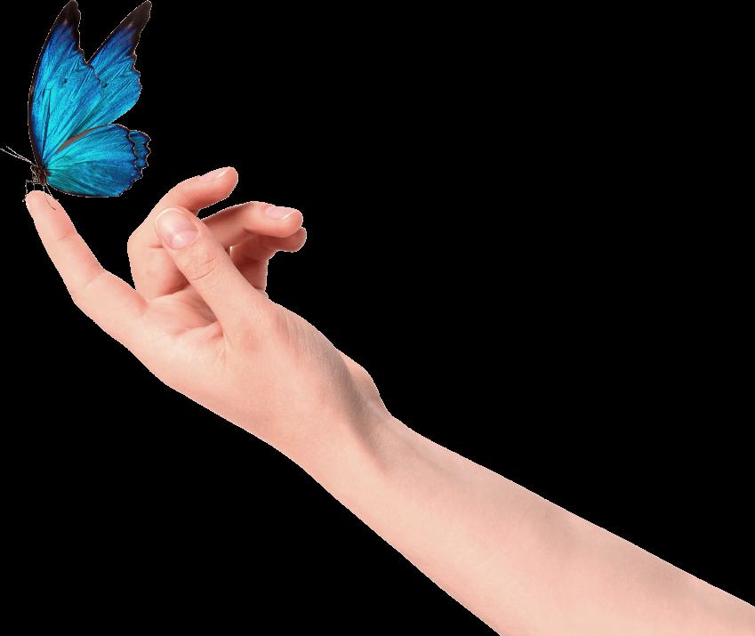 Imagem de uma mão com uma borboleta pousada no dedo indicador