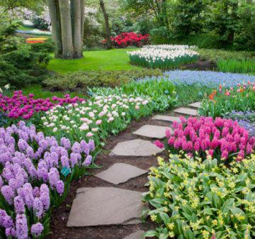 Momentum blog jardins com cores fortes - Idee per giardino senza erba ...