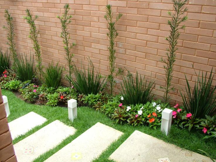 Momentum blog enfeite seu jardim com moreias for Tipos de jardines pequenos