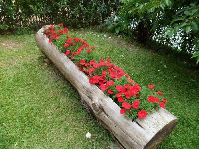 jardim-1
