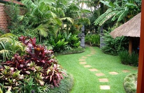 Jardim com estilo tropical
