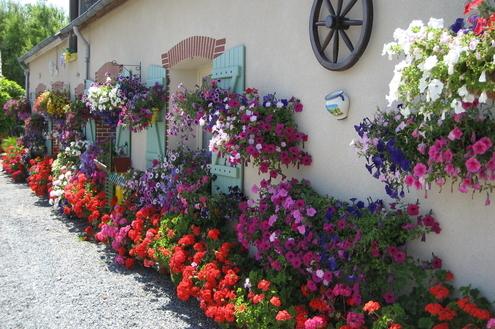 Prepare sua casa para a primavera
