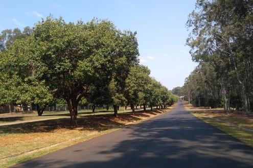 Obras de pavimentação no Santa Bárbara estão perto da conclusão