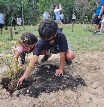 Proprietários realizam plantio de árvores no Santa Bárbara