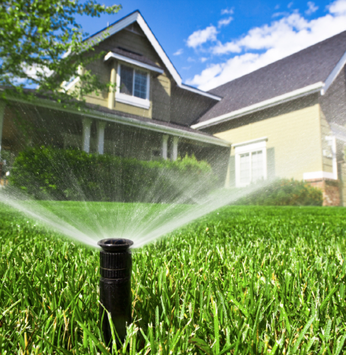 Como fazer a manutenção do seu gramado