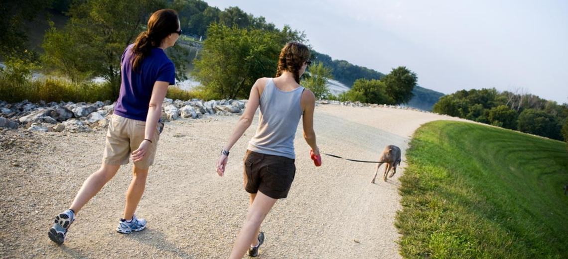 Você já caminhou hoje? Conheça os benefícios da atividade!