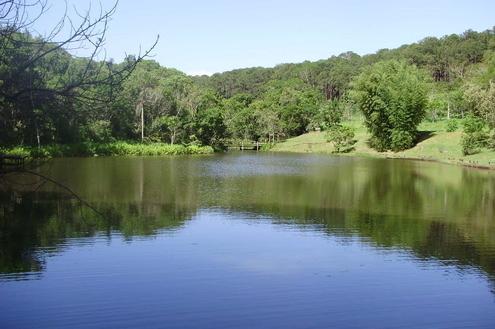 Floresta Estadual Manduri