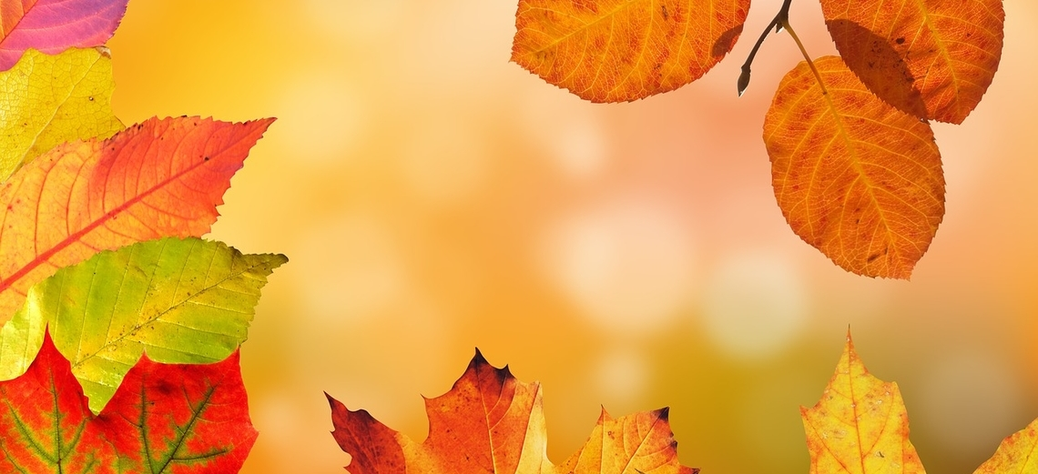 Na Riviera de Santa Cristina II, o outono não é sempre igual