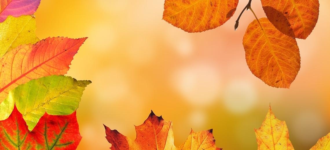 Na Riviera de Santa Cristina I, o outono não é sempre igual