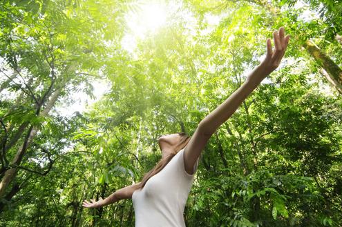 Contato com a natureza melhora a saúde