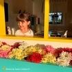 Flores na janela para receber a primavera em grande estilo 🌸🌼🌻💐🌷🌹🌺 📸: @flaviamenesca