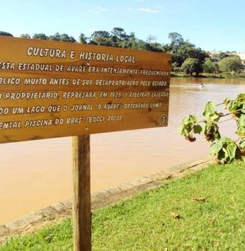 Floresta Estadual de Avaré