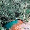 Sim! Esse lugar fica aqui no Ninho II 🤤 Tá esperando o que pra conhecer a Trilha da Cachoeira? 📸: @araujo.nicollassz