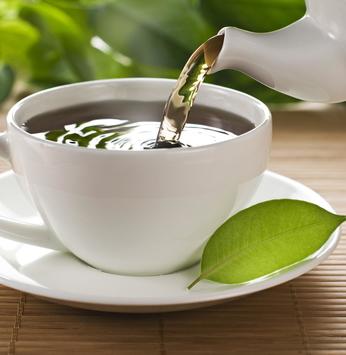 A origem do chá e das infusões