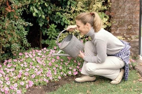 Um jardim para sua casa