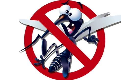 Faça a sua parte no combate à dengue