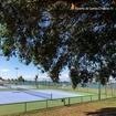 Uma foto das quadras de tênis do Iate Clube IV ou um convite para uma partida? 🎾👀 Descubra.