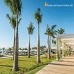 Fatos sobre a Riviera XIII: Pra onde quer que você olhe, sempre vai conseguir ver a riqueza e o charme dos detalhes ✨