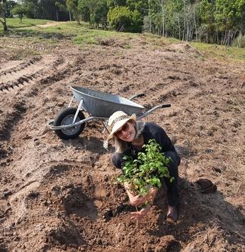 Proprietários realizam plantio de árvores no Santa V