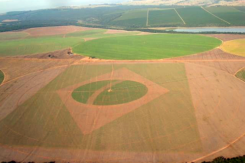 Bandeira do Brasil retratada na agricultura