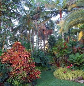 O colorido das folhas no jardim
