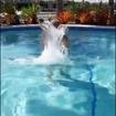 Começando o domingão do jeito certo: com o pé direito, o pé esquerdo e o corpo todo na piscina do Iate II 🧡